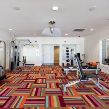 Cabana West Apartments interior: fitness center with several machines, medicine balls, dumbells, large mirror, and unique colorful flooring