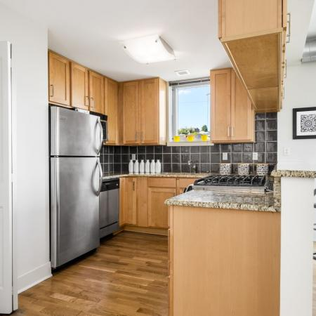 Manayunk Apartment Kitchen
