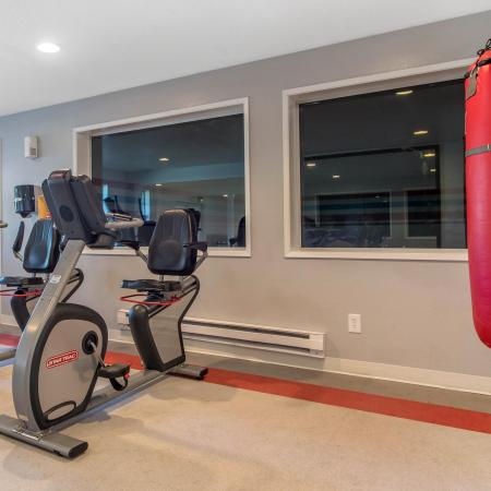 Apartment Gym With Boxing
