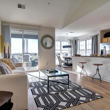 Parker Apartment Living Area - Briargate On Main