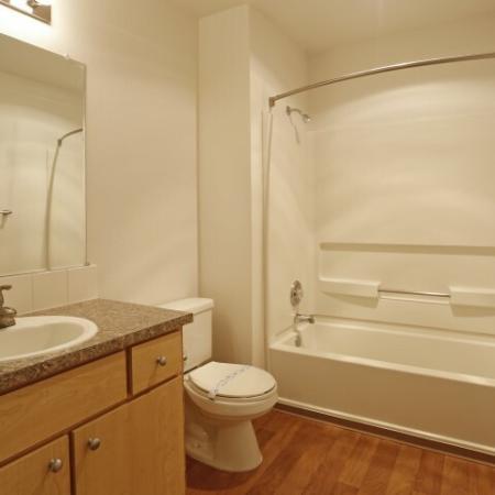 Bath Tub and shower combo