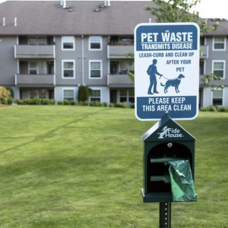 pet friendly apartments for rent