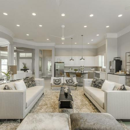 Luxurious Living Room | Conroe Apartments | The Grand Estates in the Forest