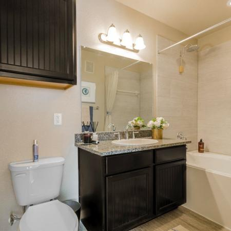 Spacious Bathroom | Luxury Apartments In Little Elm TX | Luxe 3Eighty