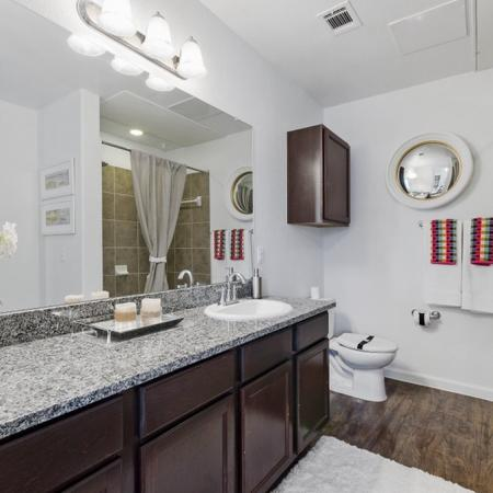 Elegant Master Bathroom | Apartment Homes In CONROE | The Grand Estates in the Forest