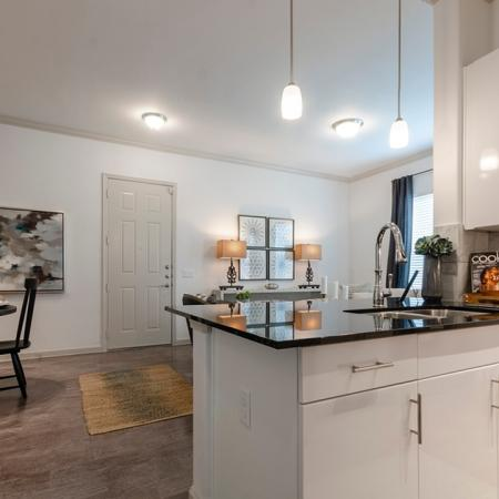 Modern Kitchen | New Braunfels Apartments For Rent | The Luxe at Creekside