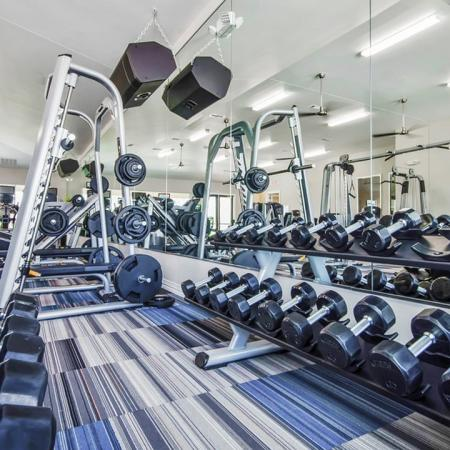 Weights Training Stations