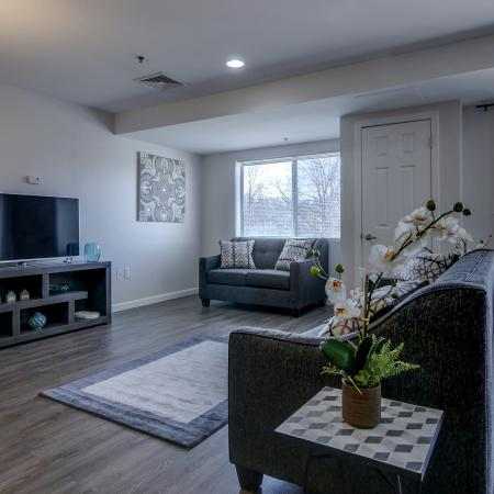 Luxurious Living Room | Manchester New Hampshire Apartments for Rent | Carisbrooke at Manchester