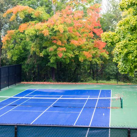 Community Basketball Court   Apartments For Rent In Haverhill Ma   Princeton Bradford Apartments