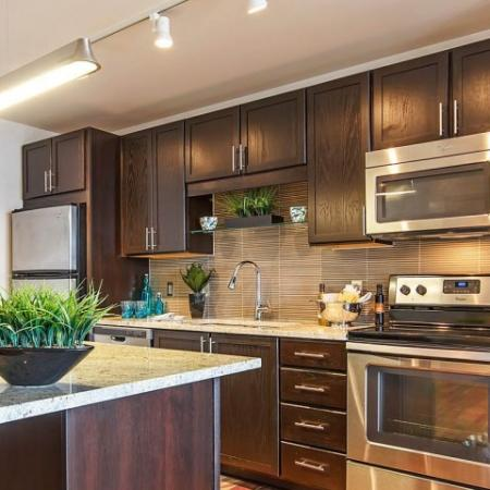 Dallas Tx Apartment High end Kitchen