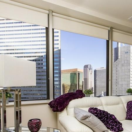 Dallas Apartment Views