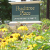 Apartments For Rent In Columbia SC   Peachtree Place