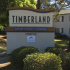 Welcome to | Timberland