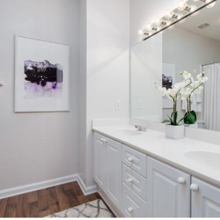 Image of double sink bathroom and decorative plant at Retreat at Peachtree City apartment
