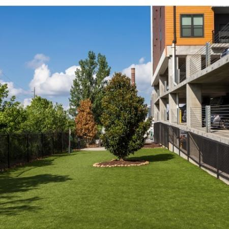 View of Dog Park, Showing West Midtown's Largest, Grass, Tree, and Fenced-In Area at Cottonwood Westside Apartments