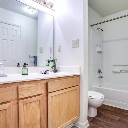 View of Classic Apartment Interior, Showing Bathroom with Single Vanity and Tub at Plantations at Haywood Apartments