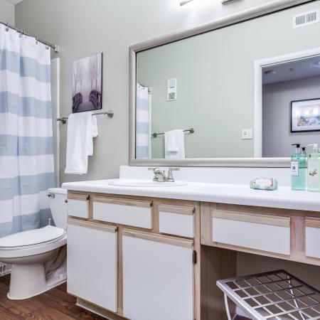Waterford Creek Apartment Oversized Bathroom Vanities with Storage