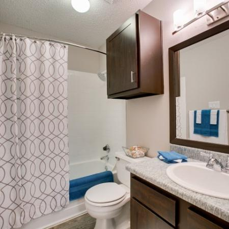 View of Bathroom, Showing Single Vanity and Plank Wood Flooring at The Arbors of Las Colinas Apartments