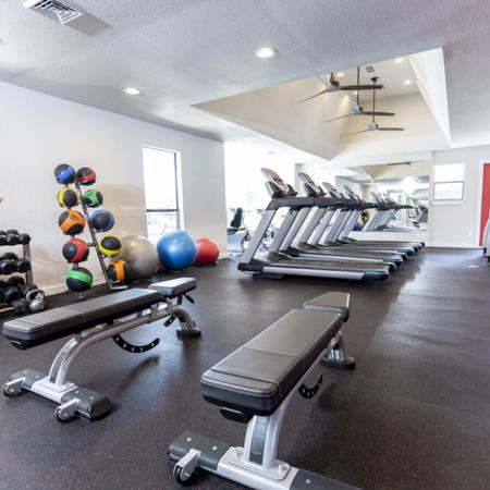 View of Fitness Center, Showing Weight Bench, Medicine Balls, and Free Weights at The Arbors of Las Colinas Apartments