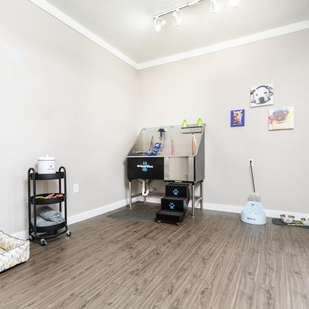 View of Pet Spa, Showing Dog Wash Station, Plank Flooring, Toy and Treat Station at Spring Pointe Apartments