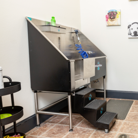 View of Dog Spa, Showing Pet Wash with Stairs and Treat and Toy Station at Bluffs at Vista Ridge Apartments