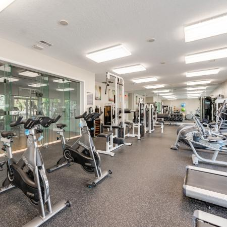 View of Fitness Center, Showing Wall of Windows, Cardio Equipment, and Weight Stations at Waterford Creek Apartments