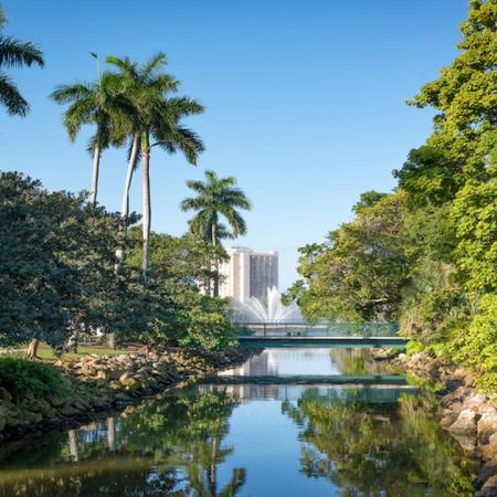 University of Miami water and lush landscaping
