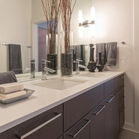 Master Bath Vanity with Quartz Countertops