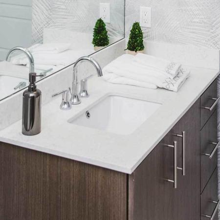 Bathroom Vanity featuring Quartz Counter tops