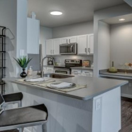 Alister Balcones Kitchen Apartment Image