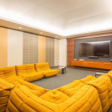 Theatre room with cozy seating options