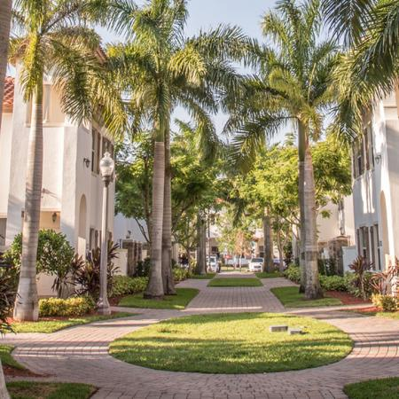 Community courtyard with large palm trees