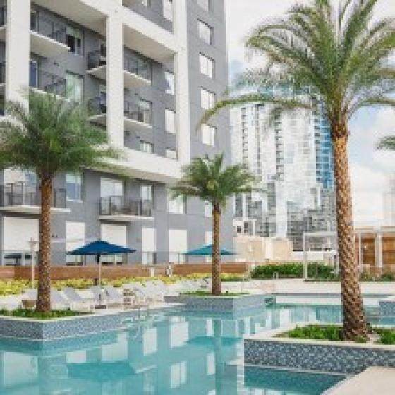 Modera Central, exterior, sparkling blue pool, palm trees, gray and white high rise building