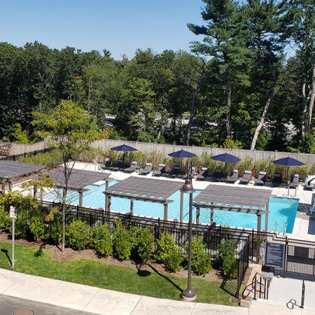 Lush Landscaping around Pool and Sun Deck | Modera Needham | Apartment Homes | Needham, MA Apartments