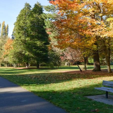 Park bench amidst beautiful landscaped park during the fall
