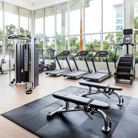 Gym with free-weights, cardio equipment, and a beautiful view.