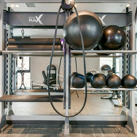 Showing gym rax with medicine balls and TRX bands