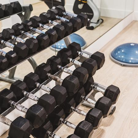 Free-weights rack with dumbells in upgraded fitness center