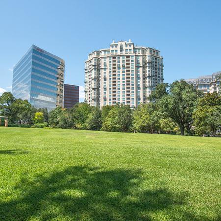 Park with Lush Landscape with Tall Building in the Background