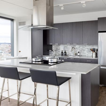 Chef's kitchen with dark cabinetry and stainless steel appliances