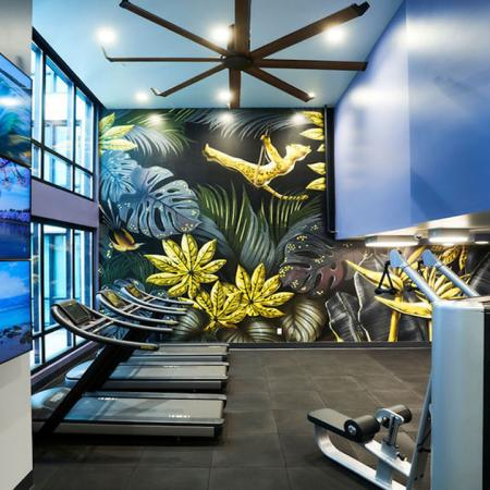 HIIT inspired fitness center with gorgeous art mural at Modera Rincon Hill apartments.