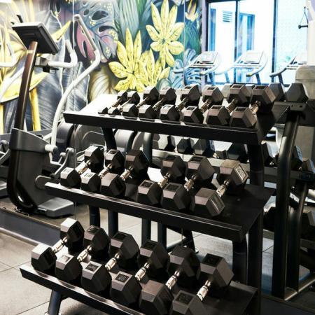 Free weights at Modera Rincon Hill apartments.