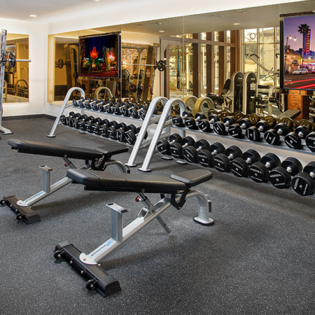 Free-weight stations and weight bench