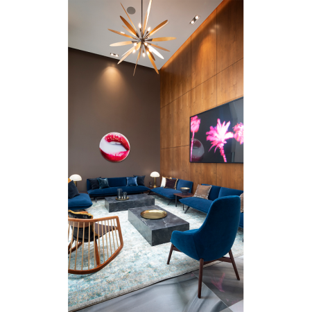 Clubroom with chic lounge areas