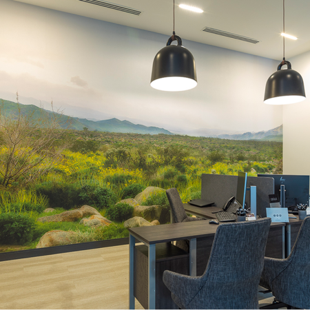 Work From Home in our Glass-Walled Conference Room with 2 Workstations and a Large Display Screen