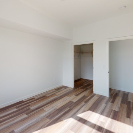 Bedroom with walk-in closets and vinyl plank-style flooring