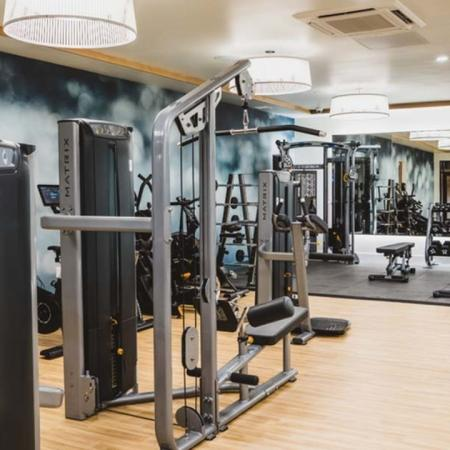 Fitness studio with exquisite lighting, mirrors, weight machines and treadmills at Modera Broadway apartments.