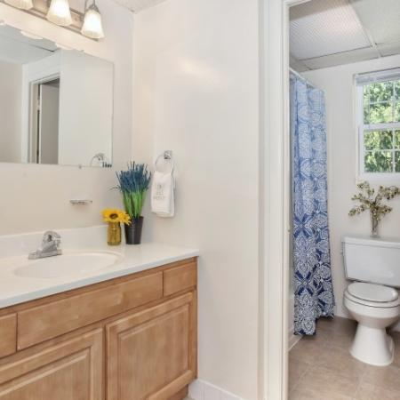 Elegant Master Bathroom | Luxury Hi-Nella Apartments | Fox Pointe