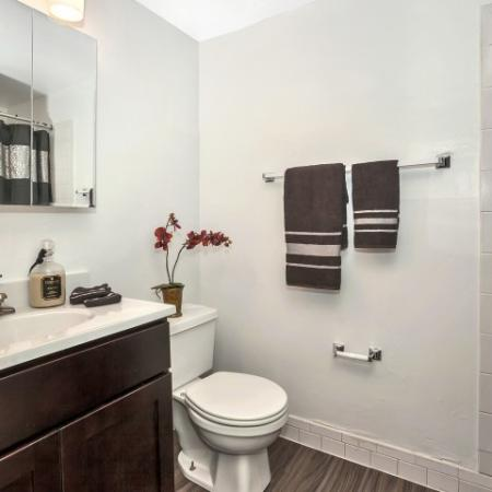 Spacious Bathroom | Apartments In Newark DE | Liberty Pointe