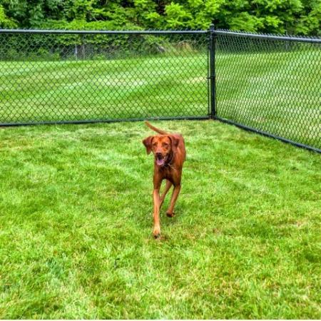 Resident Pet Park   Apartment In Bethlehem PA   Valley Park